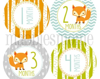Monthly Baby Boy Stickers Baby Month Stickers Monthly Bodysuit Sticker Monthly Stickers Mod Arrows Woodland Arrows(Fox)