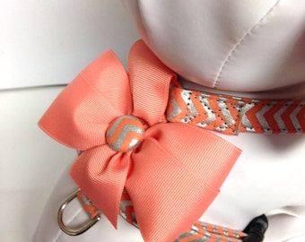Dog Harness- The Chevron Coral