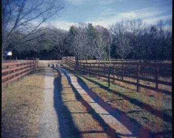 Cedar Hill Fence - Giclée Print from Holga Photograph, Color Film