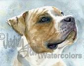 "American Pit bull Terrier, Pittie, Brown & White, Pet Portrait Dog Art Watercolor Painting Print, Wall Art, Home Decor, ""Ain't Misbehavin"""