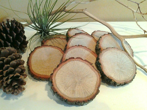 Treasury item set of 10 natural oak tree slices by for Diy rustic coasters