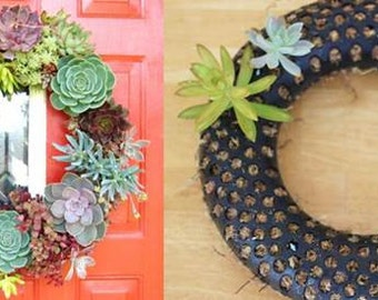 DIY Reusable Wreath Form + Tutorial Instructions Plant your Own Succulents and Plants