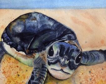 """5x7 Digital Print of Original Watercolor: """"Hatchling"""""""