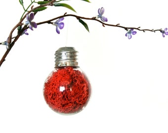 Mini Repurposed Light Bulb Ornament with Red Preserved Moss, Light Bulb Home Decoration, Red Light Bulb Christmas Ornament, Red Ornament