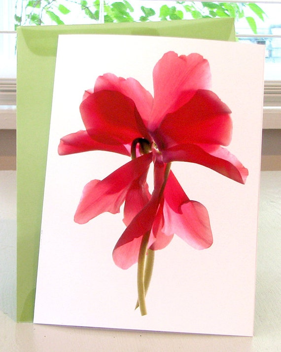 Greeting Card Floral Cyclamen Dance Note Card Blank