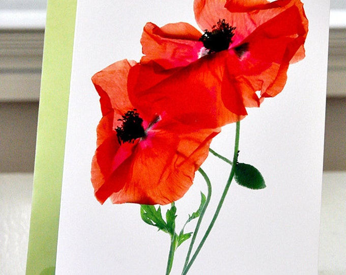 FREE SHIPPING Handmade Card Margie's Poppy Duo Greeting Card Red