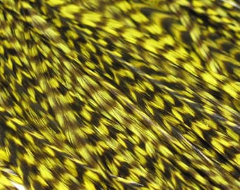 12 Grizzly Long Rooster Saddle Hackles - Yellow ( 8 - 10 inches) Hair Extension Feathers