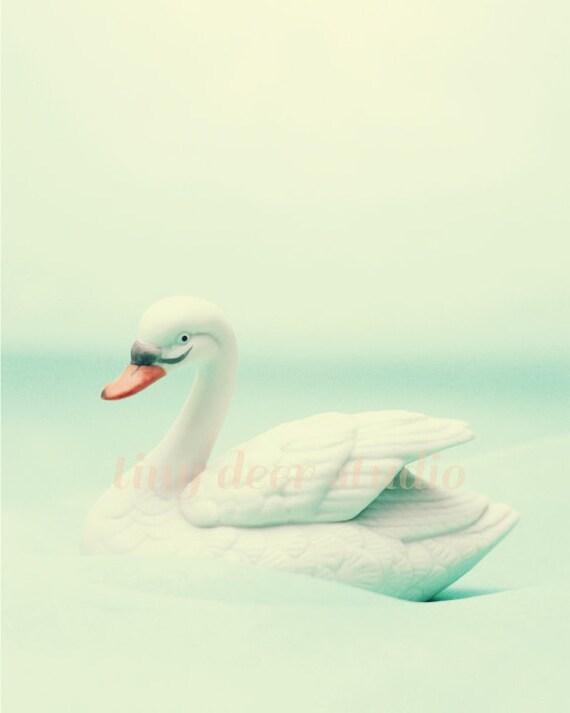 Swan 8x10 PRINT