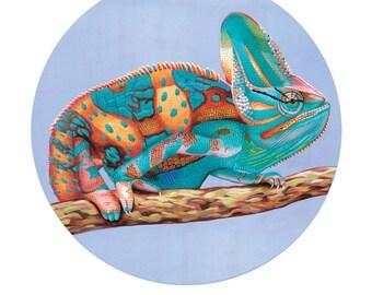 Chameleon magnet