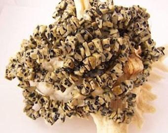 "Genuine Dalmatian Jasper Chips - 36"" inch strand"