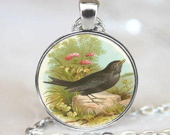 Blackbird Sitting On Rock  Pendant, Blackbird necklace   pendant, Blackbird Photo necklace charm (PD0328)