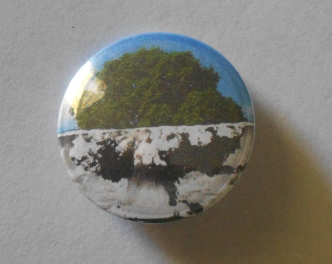 "Tree/A-Bomb 1.25"" Pinback Button"