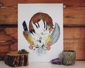 Spirit Animal: The Fox