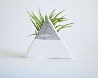 Triangle with Silver Leaf - Mini Air Plant Planter White and Tillandsia Plant