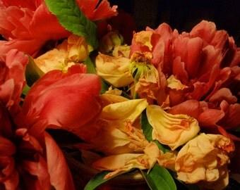 Floral Coda