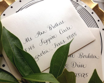 Wedding Calligraphy Envelope Addressing by Professional Calligrapher in Scripted Font,