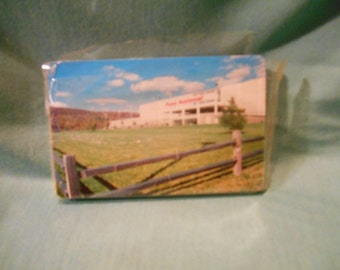 One (1), Souvenir Deck of Cards from, Penn National, in Cellophane Wrapping.