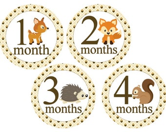 Boy Monthly Stickers Milestone Stickers Monthly Baby Stickers Baby Month Stickers Baby Monthly Stickers Forest Woodland Animals