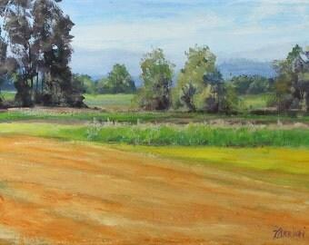 Sauvie Island - Small Original Plein Air Rural Landscape Painting