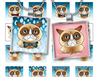 Cats Digital Collage Sheet  square 1 inch  Printable images for pendants cabochon buttons magnets charms JPEG PNG File 237