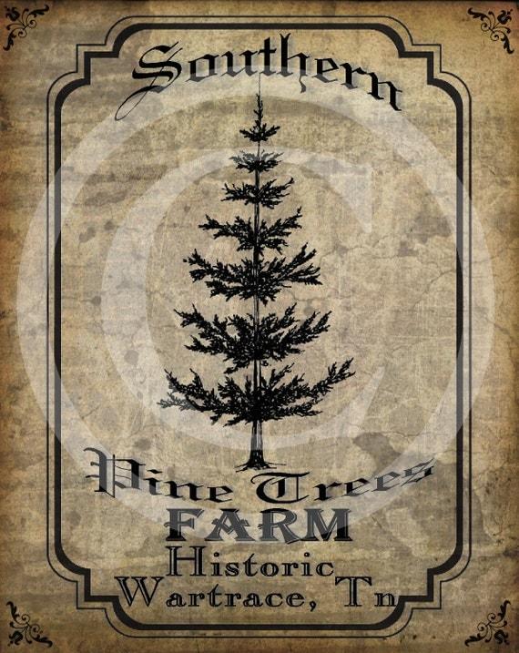 Primitive Vintage Pine Tree Farm Christmas Pantry Logo