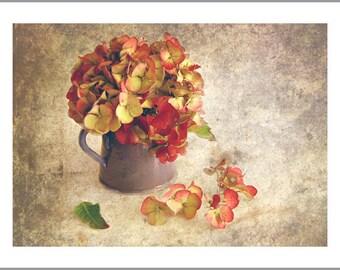 Red Yellow Hydrangea Flower Fine Art Print - Hydrangea Bouquet in a Vase