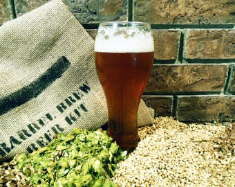 Belgian Golden Strong Ale 1 Gallon Beer Ingredient Kit - Brew in a Bag BIAB - Home Brew
