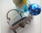 Perspex cylinder clutch box purse