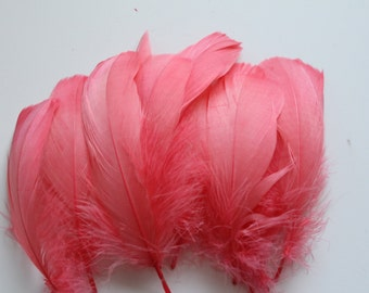 50 Loose Coral Goose Nagoire Feathers Feathers / 4-6 inches in length