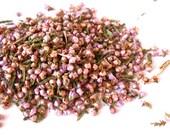 Organic HEATHER FLOWERS - Delicate, Tiny, Pink-Purple Blooms - Calluna Vulgaris - Scottish Pict
