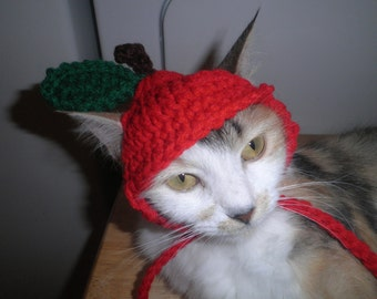 Cat or Dog Apple Hat Halloween Costume Party Hat  Crocheted Kitty Hat