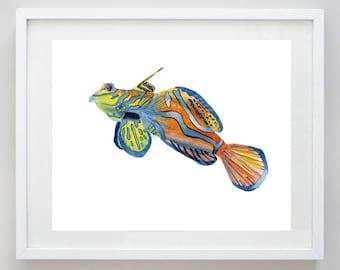 Mandarin Goby Watercolor Print - Sea Life Art -Tropical Fish Painting - Ocean Wall Decor