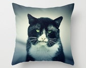 Cat Pillow - Halloween Pillow - Halloween Decoration - Scary Pillow - Scary Decoration - Creepy Cat Photo - 16x16 18x18 20x20 Pillow Cover