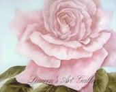 Pink Rose, Original Oil Painting by Lauren Kusar, Free Shipping