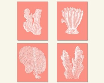 Pink Coral, Sea Coral Art, Sea Coral, Print Set four prints Coral Wall Art, Coral Print, Sealife print , Pink Coral