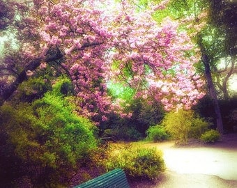"""Palace Photography - palace gardens at Fontainebleau in France, romance, green and pink, Europe - """"Tranquility"""""""