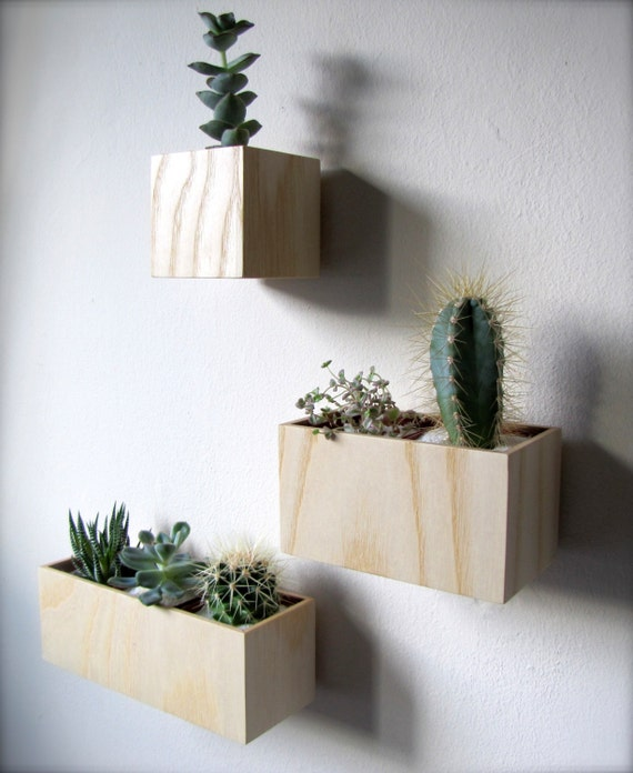 clearance set of three wall hanging planters in ash wood. Black Bedroom Furniture Sets. Home Design Ideas