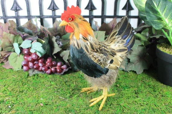 Furry Animal Feather Brown Hen Chicken Taxidermy Decorative Figurine Decor S