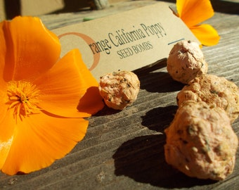 Orange California Poppy seeds, Seed Bombs, guerilla gardening, plantable paper, flower seed bomb favor seed kits paper seeds gift for wife