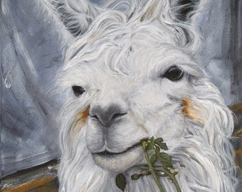 """Llama, """"I beg your pardon, I never promised I wouldn't eat your rose garden"""" giclée print of original acrylic painting"""
