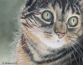 Wonderment - Original watercolor print 5 by 7 5x7 with mat and backing