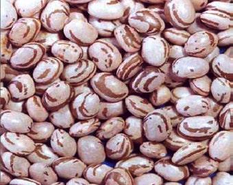 Carioca bean (feijão carioquinha), Brazil's most popular bean.Carioca beans (khaki stripes on a beige background) - similar to pinto beans