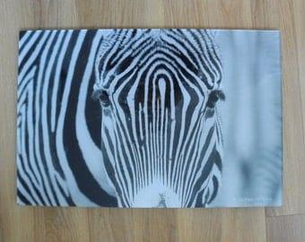 Zebra ACRYLIC wall art - photographic art 60cm x 40cm