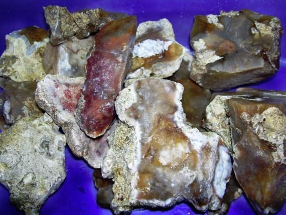 Slabbing Agate: 15 Lbs. Savannah River Agate Chert / Lapidary Material