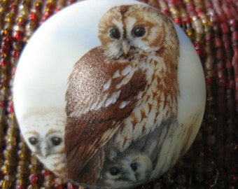 Burrowing Owl Family Trio Czech Glass Button 42mm
