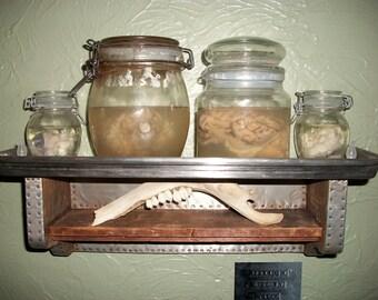 Wet Specimens w/ Display Shelf 1 - Handmade
