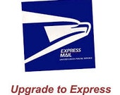 Express shipping - small package in the US