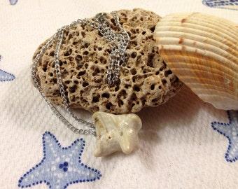 Unique Pretty Shell Necklace
