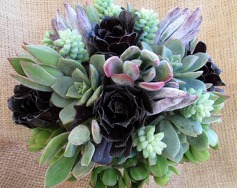 Stunning Plum, Silver & Blush Succulent Bouquet and Boutonniere