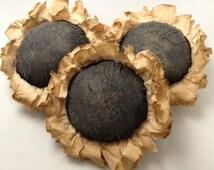 Primitive Sunflower Ornies. Bowl Filler, Fall, Gift, Handmade, Primitive, Hand Crafted, Original Design
